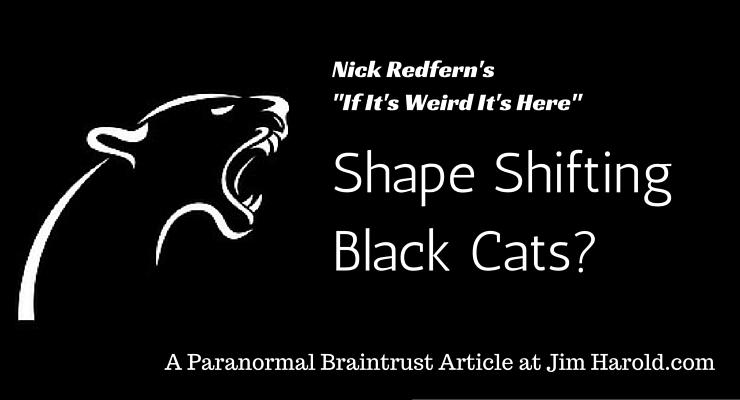 shape shifting cats