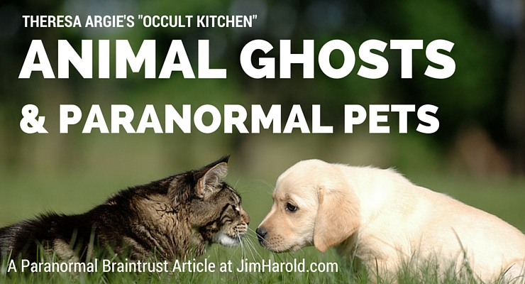 Animal ghosts and paranormal pets theresa argie jimharold publicscrutiny Images