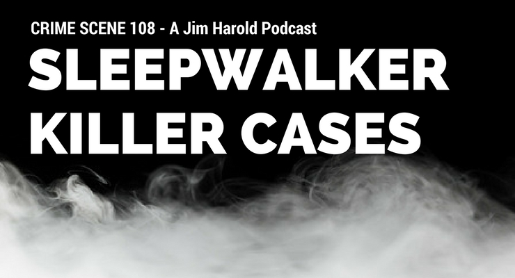 Sleepwalker Killer Cases – Crime Scene 108