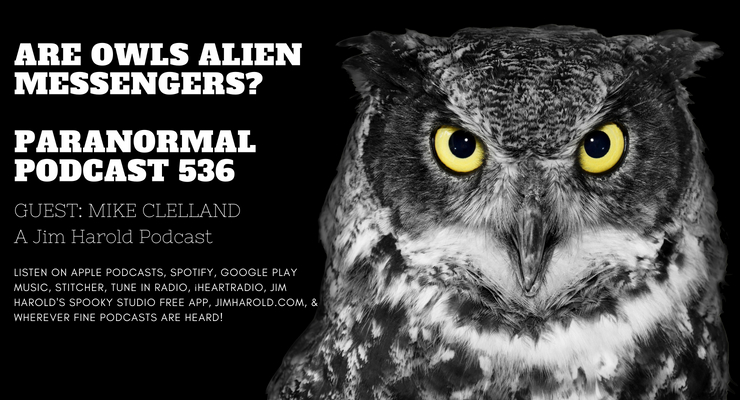 Are Owls Alien Messengers – Paranormal Podcast 536